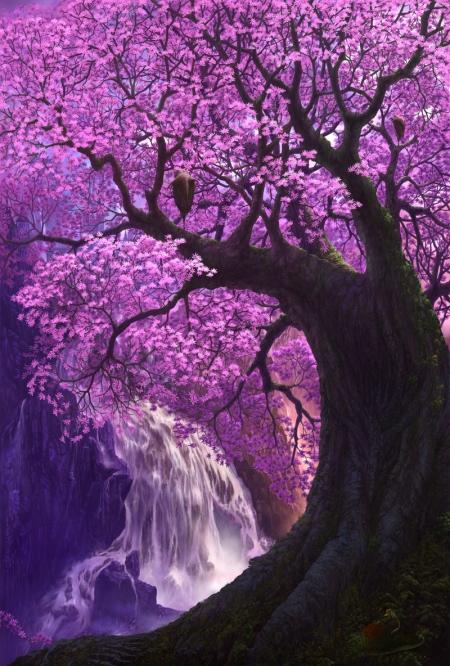 Cherry.Tree.full.97728